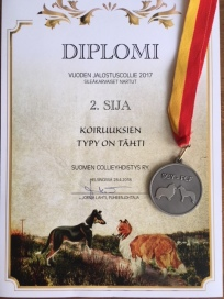 Diplomi Jaana 2